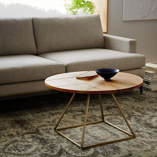 Ferrous Coffee Table for living room