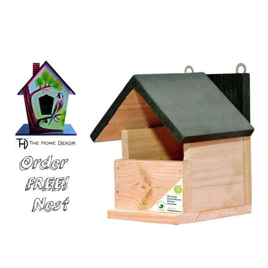 Save birds by placing Wooden nest at Home